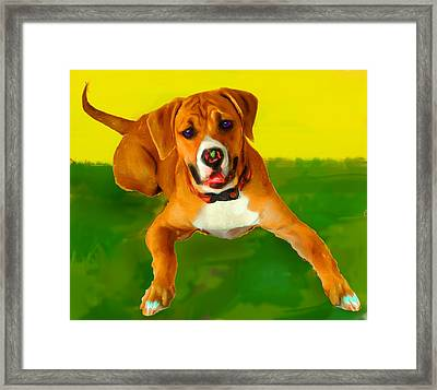 Maggie Framed Print by Tammy Berk