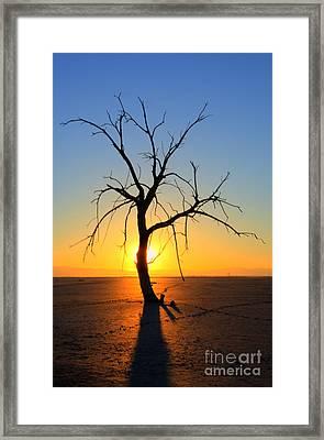 Magic At The Salton Sea Framed Print by Bob Christopher