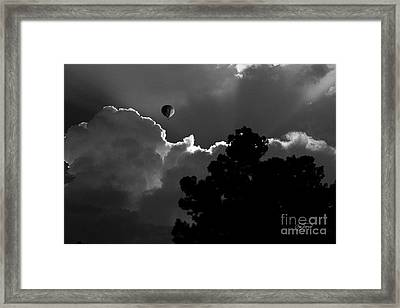 Magic Carpet Ride Framed Print by Cris Hayes