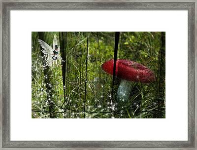 Magic Mushroom. Framed Print by Nathan Wright