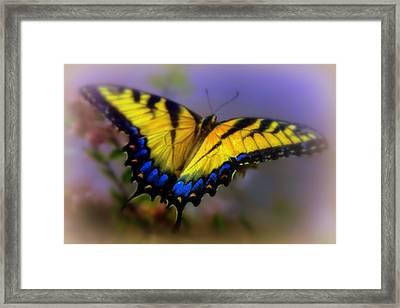 Magic Of Flight Framed Print by Karen Wiles