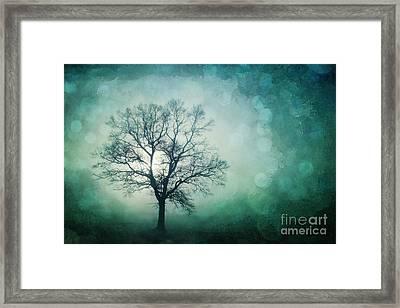 Magic Tree Framed Print by Priska Wettstein