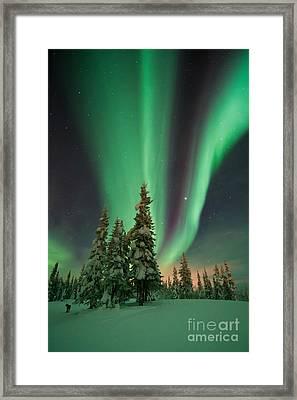 Magic Winter Night Framed Print by Priska Wettstein
