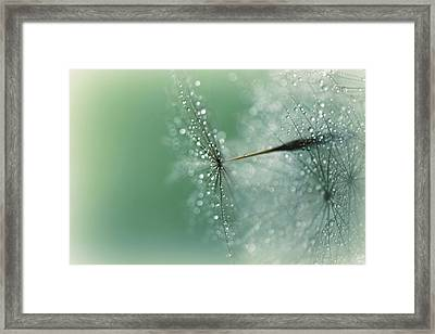 Magical Bokeh Framed Print by Lisa Knechtel