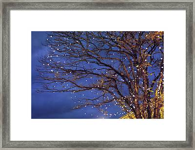 Magical In Blue Framed Print by Violet Gray