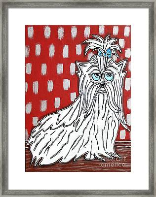 Magnificent Maltese Framed Print by Cynthia Snyder