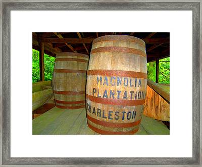 Magnolia Brew 2 Framed Print by Ron Kandt