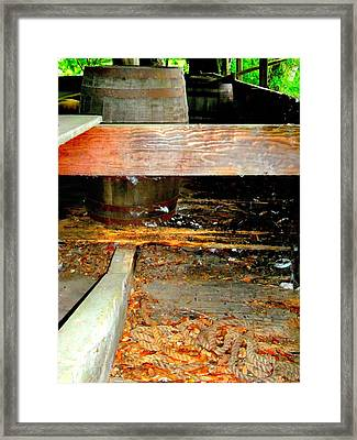 Magnolia Brew 3 Framed Print by Ron Kandt