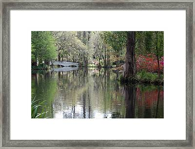 Magnolia Plantation Gardens Series II Framed Print by Suzanne Gaff