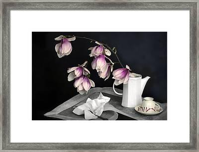 Magnolia Still Framed Print by Diana Angstadt