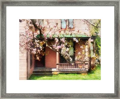 Magnolias By Back Porch Framed Print by Susan Savad