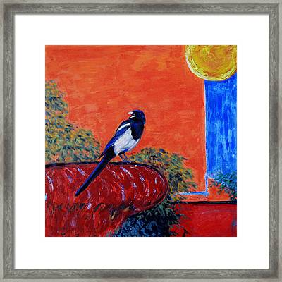 Magpie Singing At The Bath Framed Print by Xueling Zou
