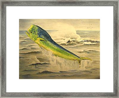Mahi Mahi Framed Print by Juan  Bosco