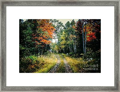 Maine Back Road Framed Print by George DeLisle