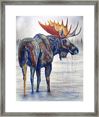 Majestic Moose Framed Print by Teshia Art