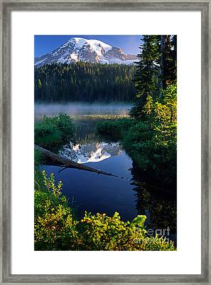 Majestic Reflection Framed Print by Inge Johnsson