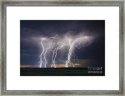 Majestic Framed Print by Ryan Smith