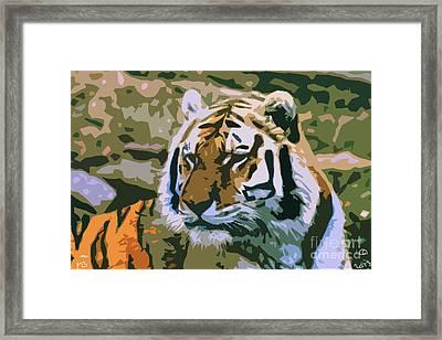 Majestic Tiger Framed Print by Mark Brady