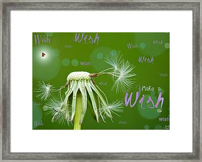 Make A Wish Card Framed Print by Lisa Knechtel