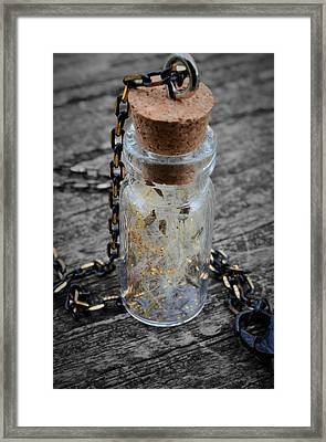 Make A Wish - Dandelion Seed In Glass Bottle With Gold Fairy Dust Necklace Framed Print by Marianna Mills