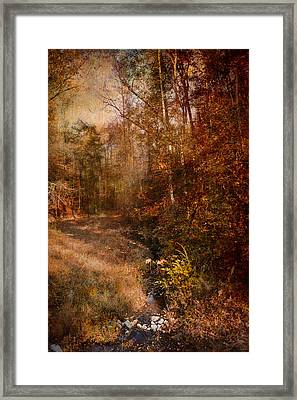 Make A Wish Framed Print by Jai Johnson