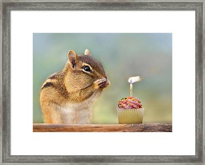 Make A Wish Framed Print by Lori Deiter