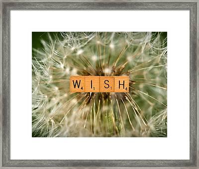 Make A Wish Framed Print by  Onyonet  Photo Studios