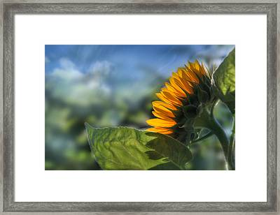 Make Each Day Count Framed Print by Lori Deiter