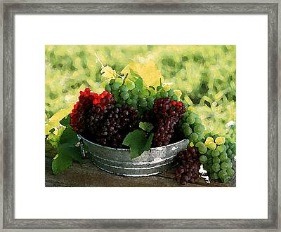 Making Wine Framed Print by Cole Black