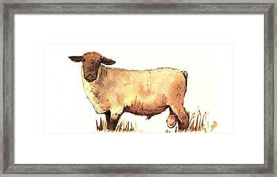 Male Sheep Black Framed Print by Juan  Bosco