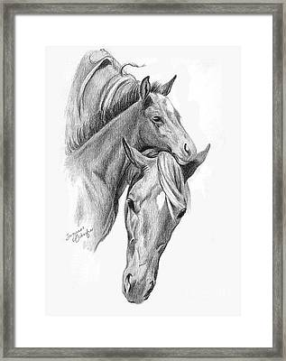 Mama And Baby Horse Framed Print by Suzanne Schaefer
