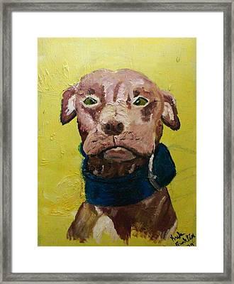 Mama Dog Framed Print by Kayla Franklin