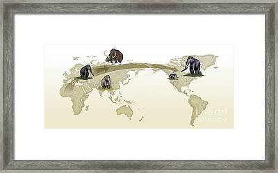 Mammoth Evolutionary Migration Framed Print by Spl