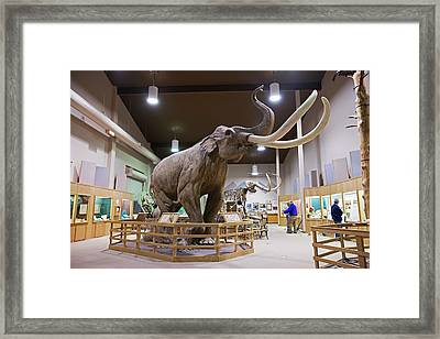 Mammoth Exhibit Framed Print by Jim West