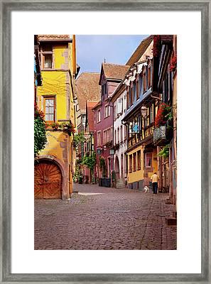 Man Walks His Dag Along Rue Du General Framed Print by Brian Jannsen