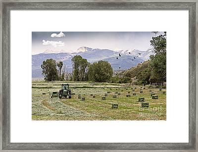 Mancos Colorado Landscape Framed Print by Janice Rae Pariza