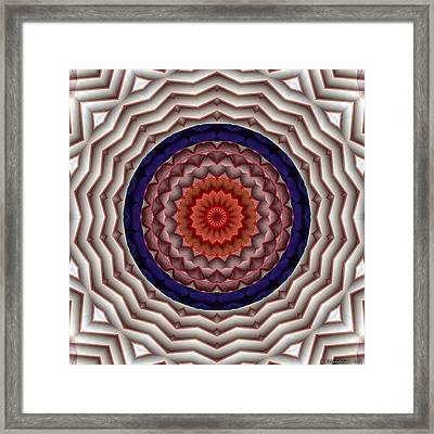 Mandala 10 Framed Print by Terry Reynoldson