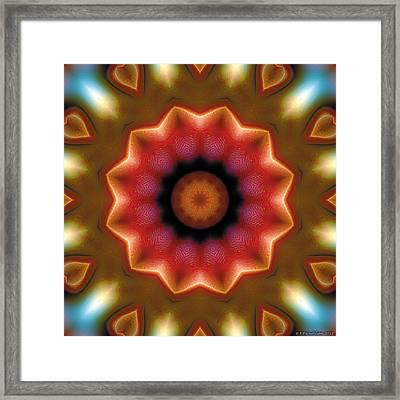 Mandala 103 Framed Print by Terry Reynoldson