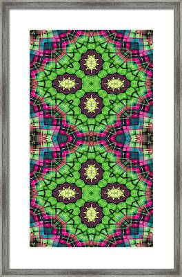Mandala 112 For Iphone Double Framed Print by Terry Reynoldson