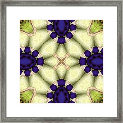 Mandala 115 Framed Print by Terry Reynoldson