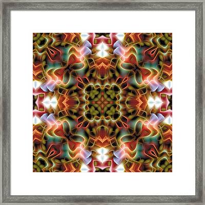 Mandala 120 Framed Print by Terry Reynoldson
