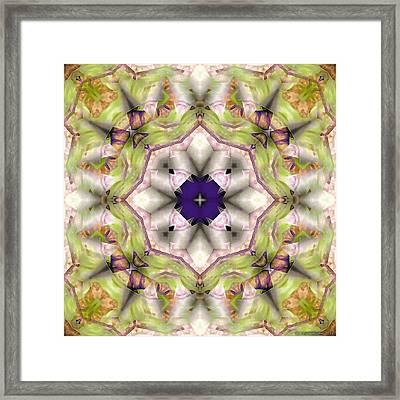 Mandala 127 Framed Print by Terry Reynoldson