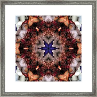 Mandala 14 Framed Print by Terry Reynoldson