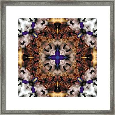 Mandala 17 Framed Print by Terry Reynoldson