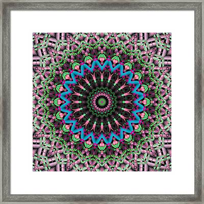 Mandala 33 Framed Print by Terry Reynoldson