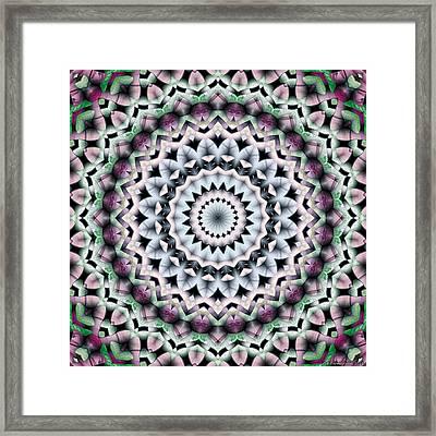 Mandala 40 Framed Print by Terry Reynoldson
