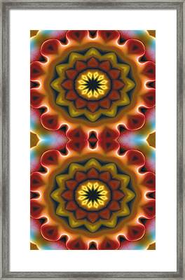 Mandala 75 For Iphone Double Framed Print by Terry Reynoldson