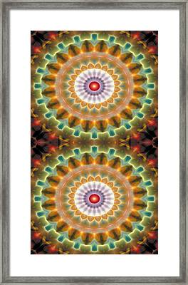 Mandala 87 For Iphone Double Framed Print by Terry Reynoldson