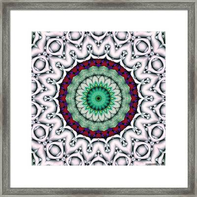 Mandala 9 Framed Print by Terry Reynoldson