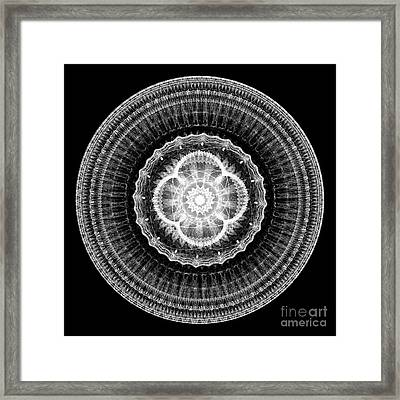 Mandala Of Purity Framed Print by Martin Capek